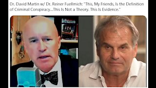 """Dr. David Martin w/ Dr. Reiner Fuellmich: """"This Is the Definition of Criminal Conspiracy"""