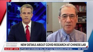 Gordon Chang: New Docs Show Clear U.S. Connection to Wuhan Lab