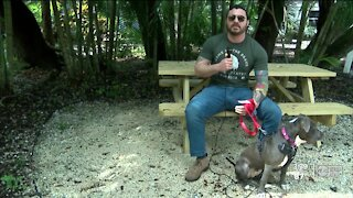 Humane Society of Sarasota County matches up pets with veterans