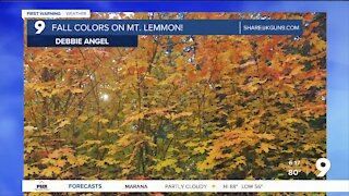 Breezy and cooler weather ahead