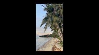 Sea Beach and beautiful sunset