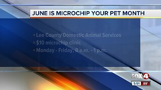 Lee County Domestic Animal Services offering discounted micro-chipping