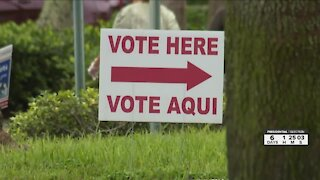 Palm Beach County Elections Office hosting telephone town hall