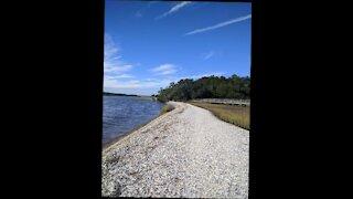 Southern Jeaux Carolina Beach Music