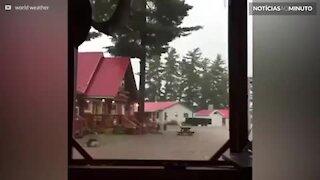 Relâmpago violento destrói árvore em tempestade no Canadá