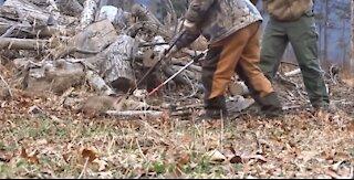 AMAZING Rescue wild animal from poaching traps