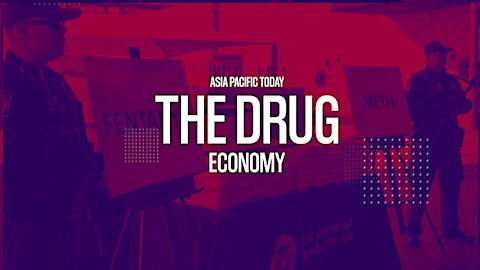 The Drug Economy. Part 2. With Dr. Louise Shelley.