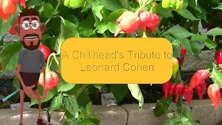 """Habanero"" - A Chilihead's Tribute to Leonard Cohen"