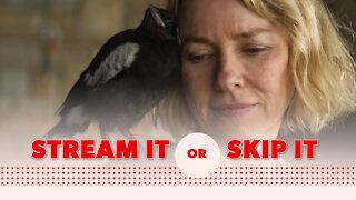'Penguin Bloom' on Netflix: Stream It or Skip It?