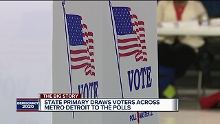 State primary draws voters across metro Detroit to the polls