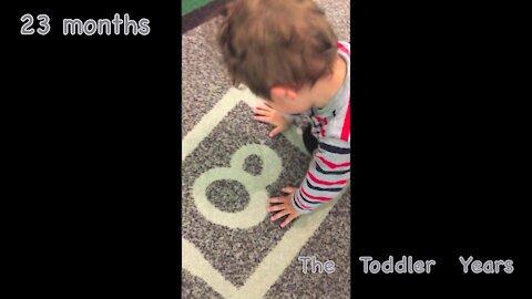 23-month-old behavior and development