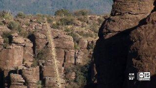Arizona follows national trends with increasing temperatures