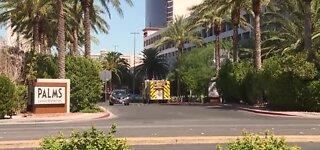 AstroTurf fire under investigation at Palms