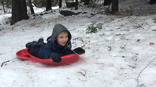 Gnashing through the snow! Clever youngster uses sledge to pull out loose tooth