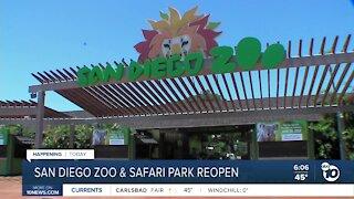 San Diego Zoo, Safari Park to reopen