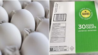 More Eggs Are Being Recalled In Canada Because Of A Salmonella Risk