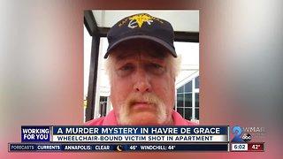 A murder mystery in Havre de Grace