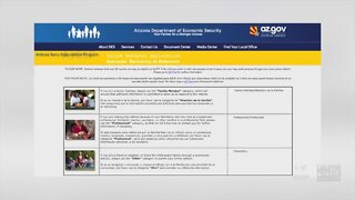 Program adapts for developmental childhood care during pandemic