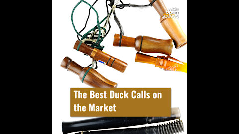 The Best Duck Calls on the Market