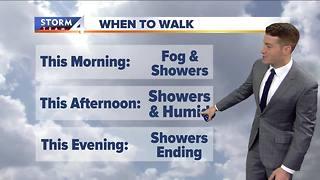 Walking the dog forecast
