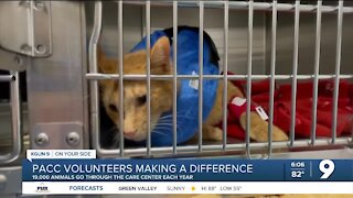 PACC volunteers making a difference