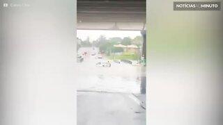 Mulher é resgatada de carro arrastado por inundação na Austrália