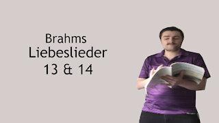 Brahms Liebeslieder - Vögelein durchrauscht die Luft & Sieh, wie ist die Welle klar