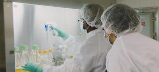 Another coronavirus vaccine trial on hold