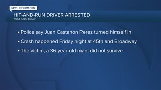Hit and run driver arrested in West Palm Beach