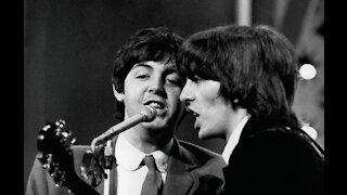 Sir Paul McCartney's special tree