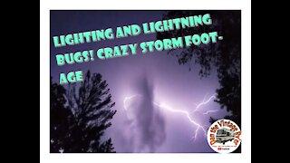 Lightning and Lightning Bugs!