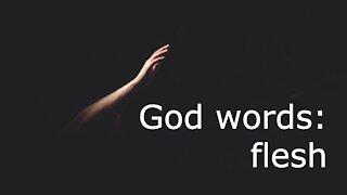 God words: flesh