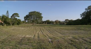 Old Boca Raton golf course being transformed