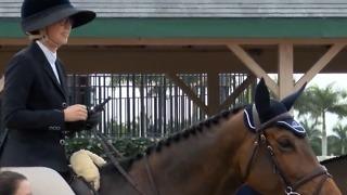 Winter Equestrian Festival begins