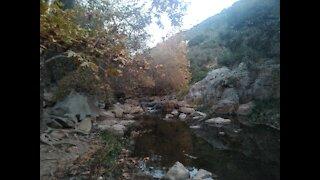 Beautiful creek view