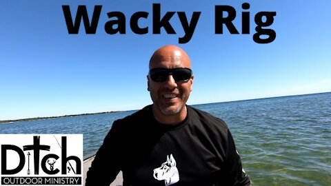 Wacky Rig smashes 20lbs of Smallmouth in 1hr 40min