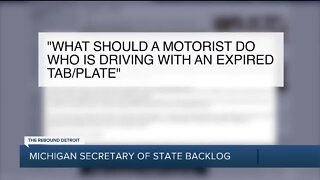 Michigan Secretary of State Backlog