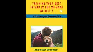 CHANGE YOUR DOG'S BEHAVIOR