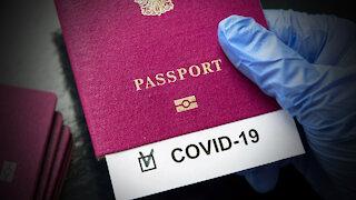 World Economic Forum Announces Vaccine Cards To Fly Internationally!
