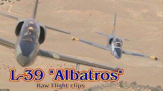 """L-39 """"Albatros"""" Raw Jet Flight Footage"""