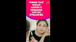 What If Humans Didn't Have Eyelashes *