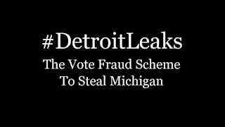 Detroit Leaks - The Voter Fraud Scheme to Steal Michigan