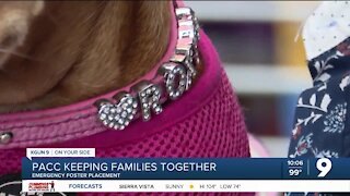 PACC keeping families together, emergency foster placement