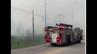 Lightning likely sparked 11-acre brush fire in Fellsmere