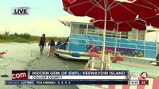 Hidden gem of Southwest Florida: Keewaydin Island - 8:30am live report