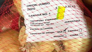 Canada's Salmonella Onion Situation Is Growing With Another New Brand Recalled
