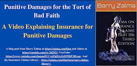 Punitive Damages for the Tort of Bad Faith