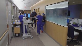 Politifact Wisconsin: Does Wisconsin rank 49 in healthcare spending?