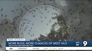 West Nile virus among concerns with increased mosquito population