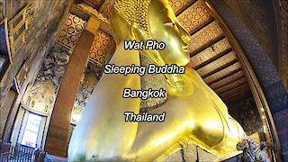 Wat Pho Sleeping Buddha in Bangkok, Thailand